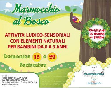MARMOCCHIO AL BOSCO